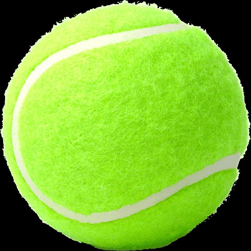 養生用テニスボール